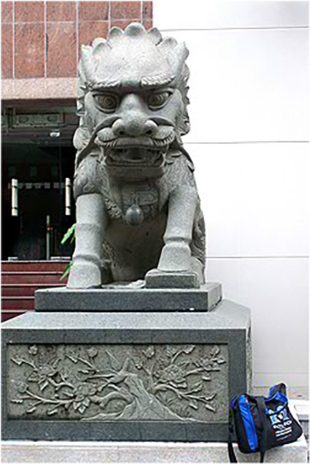 Bag posing in front of his star sign (a lion), Shenzhen, China, June 2012