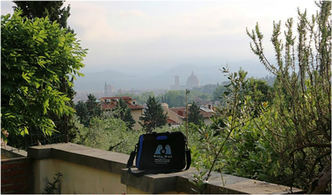 Bag enjoying a misty vista of Firenze. Italy, May 2015.