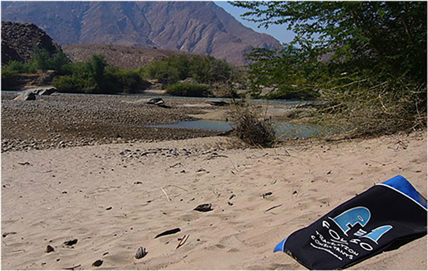 Bag enjoying his winter breakaway on the sands of the Kunene River.  Namibia, June 2013.