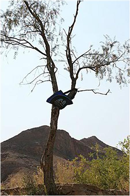 Hoog in die takke, after too many Windhoek Lagers.  Damaraland, Namibia, September 2012.