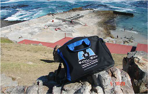 Bag basking in the sun above the Old Harbour, Hermanus.