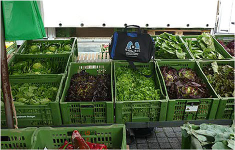 Bag proving his green credentials at the Wochenmarkt, Stuttgart, Germany,  June 2012.