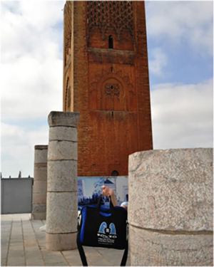 Bag checking out the incomplete Hassan tower dating back to the 12th century,  July 2014.