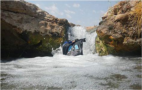 Bag frolicking in a rare desert stream. Damaraland, Namibia,  September 2012.