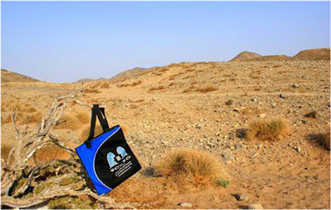 As-Salamu Alaykum! Bag striking a pose in the Saudi Arabian desert near Jeddah.