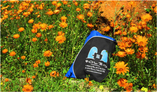 Bag amidst an abundance of daisies, Van Rhynsdorp, August 2015.
