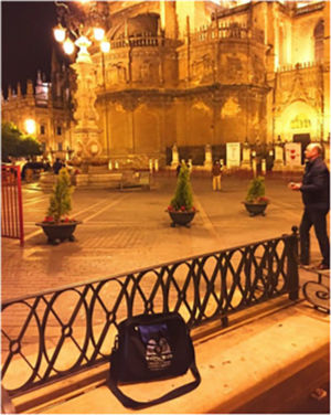 Bag paying a nigth-time visit to Seville cathedral. Seville, Spain, March 2015.