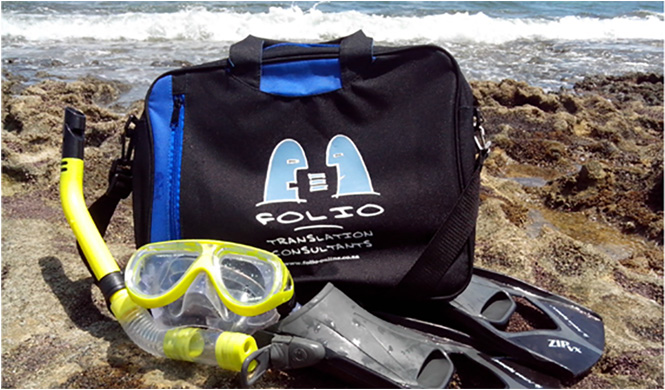 Bag snorkelling on Praia dos Carneiros beach, Pernambuco, Brazil.