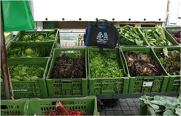 Bag proving his green credentials at the Wochenmarkt, Stuttgart, Germany, June 2012.