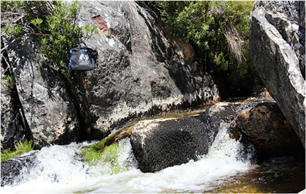 Bag soaking up some sun at the Witte River, Bain's Kloof,  Western Province, December 2014.