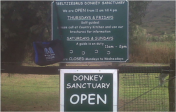 Bag entering the sanctuary for retired donkeys at Eseltjiesrus, McGregor, May 2013.