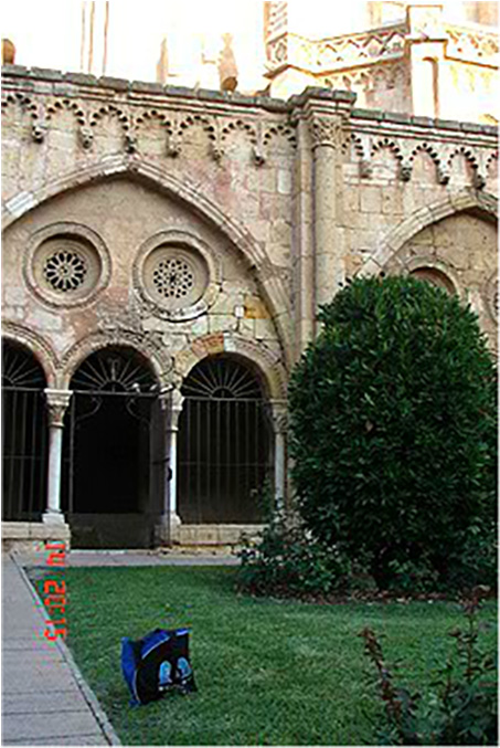 Bag admiring the Gothic splendour of Tarragona cathedral, Tarragona, July 2012