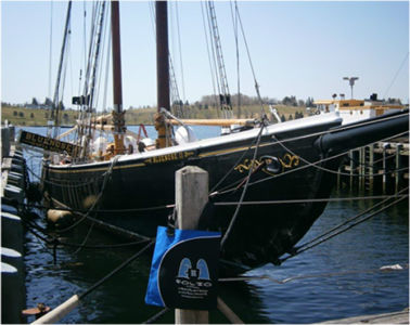 Bag admiring the famous racing yacht, Bluenose 11, Lunenburg,  Nova Scotia, Canada, May 2015.