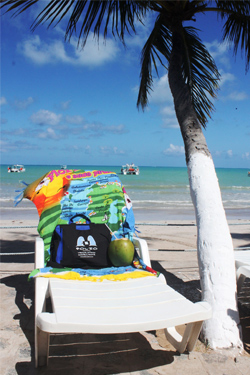 Bag relaxing on Maragogi beach, Alagoas, Brazil.