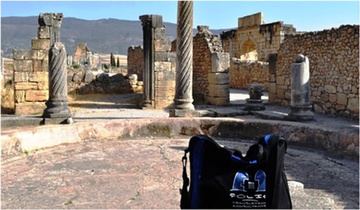 Bag lounging in one of the villas at the Roman ruins at Volubilis, Morocco, July 2014.