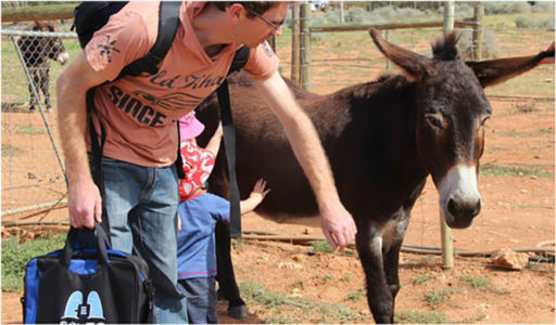 During his April break Bag took the Hill family to visit  some donkey friends in McGregor.
