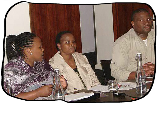 Translator Workshop, Protea Hotel Fire & Ice!, Cape Town, 24 April 2012.